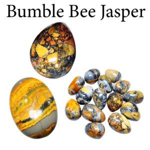 Jasper, Bumble Bee