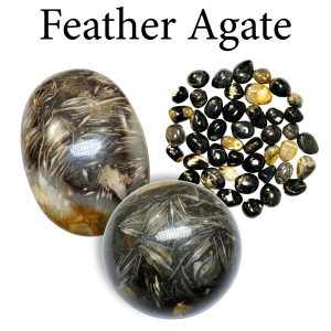 Agate, Feather