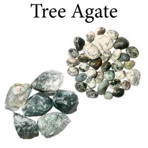 Agate, Tree